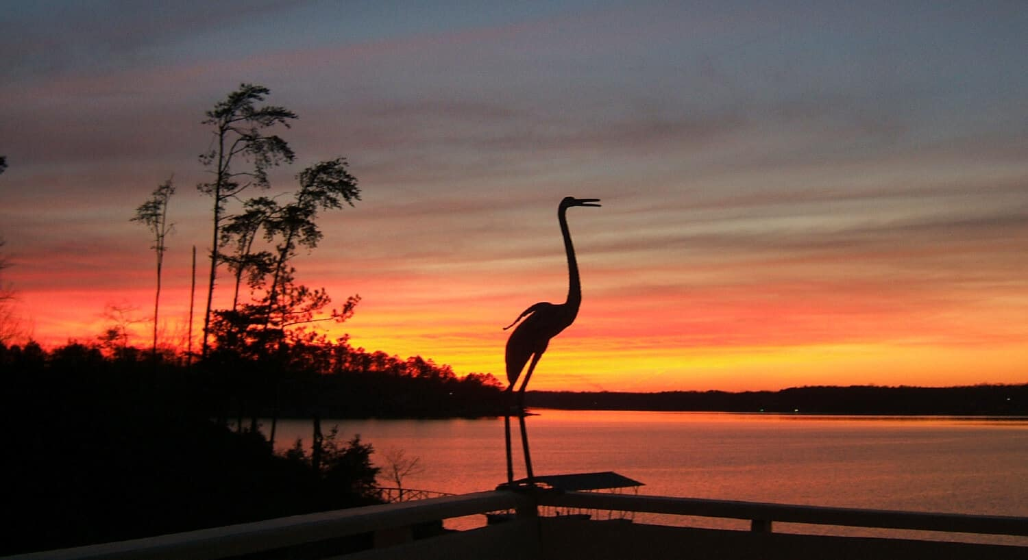 A crane stands on the edge of a deck rail against the background of a stunning sunset, with palm trees in the background.