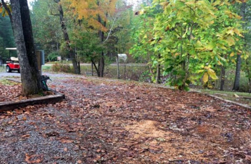 Open space in wooded area near parking lot, set up for RV parking.